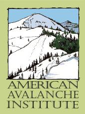 aai-2009-logo