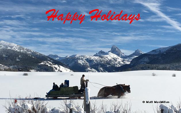horse-sleigh-mmacmillan